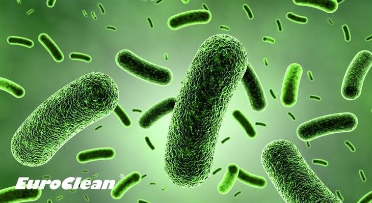 Legionella i problemy z ciepłą wodą